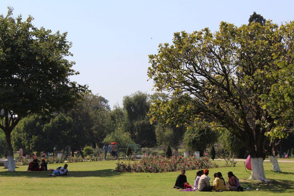 Chandigarh - rosarium